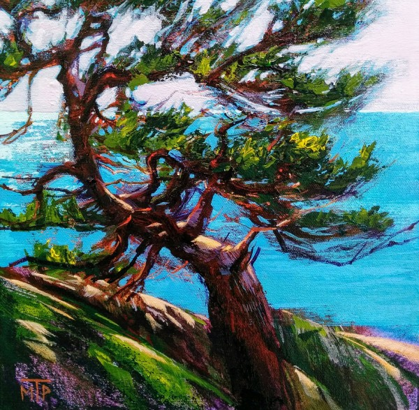 Lighthouse Park Jack Pine Study by Tatjana Mirkov-Popovicki