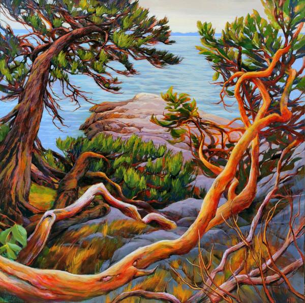 Coastal Arbutus and Jack Pine by Tatjana Mirkov-Popovicki