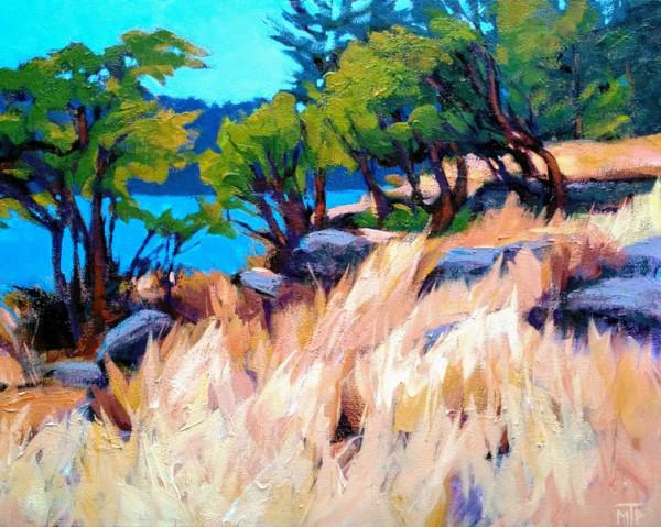 Salt Spring Island by Tatjana Mirkov-Popovicki