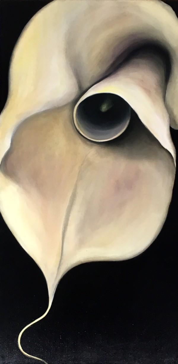 Calla on Black by Ansley Pye