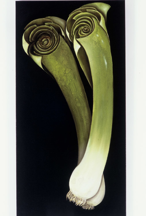 Two Leeks by Ansley Pye