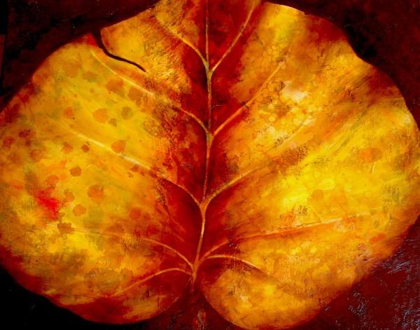 Leaf from Ixtapa by Ansley Pye