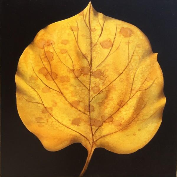 Santa Fe Leaf by Ansley Pye