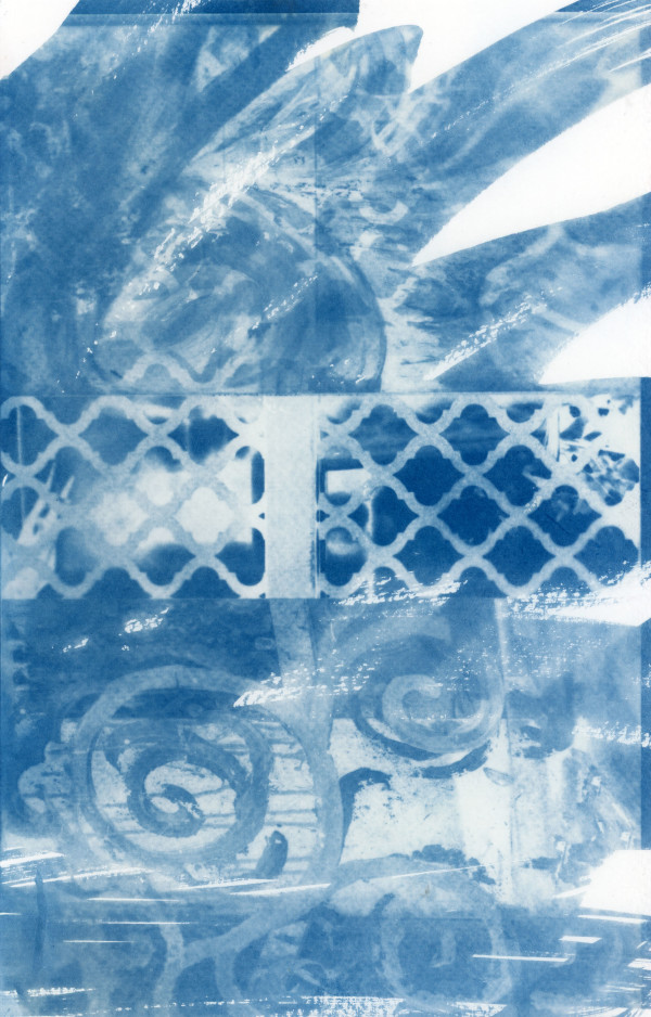 Cyanotype 20190816002 by Karen Johanson