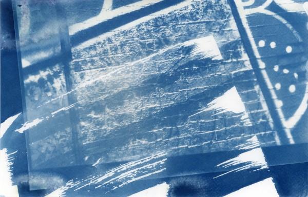 Cyanotype 20190820003 by Karen Johanson