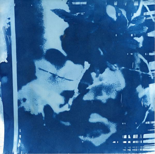 Cyanotype by Karen Johanson