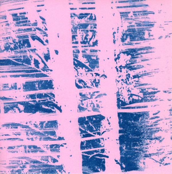 Rose-tinted winter by Karen Johanson