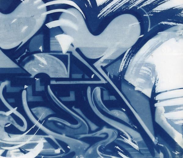 Cyanotype 20200302003 by Karen Johanson