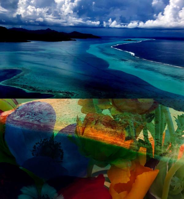 Hallucinations French Polynesia by Bonnie Levinson
