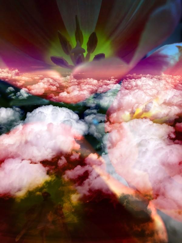 Hallucinations: LSD trip3 by Bonnie Levinson