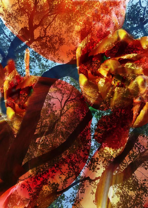 Hallucinations: Flower trees by Bonnie Levinson