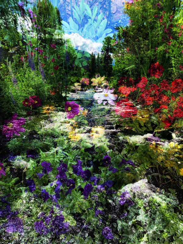Rushing Waters and Wildflowers in Aspen by Bonnie Levinson