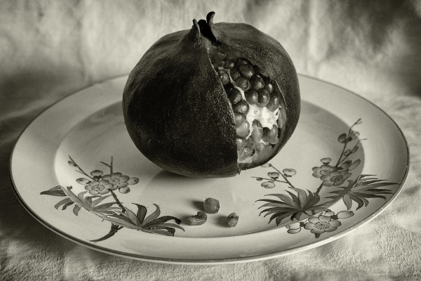 Pomegranate by Kelly Sinclair