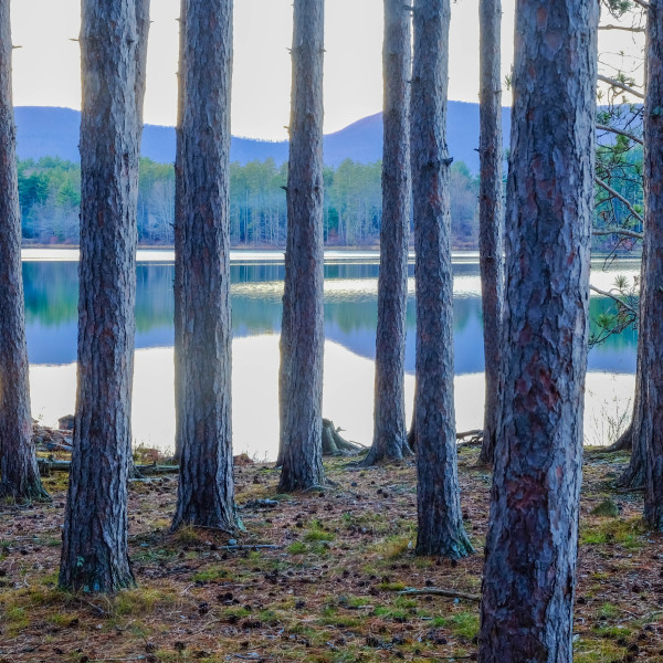 Reflection Cooper Lake by Kelly Sinclair