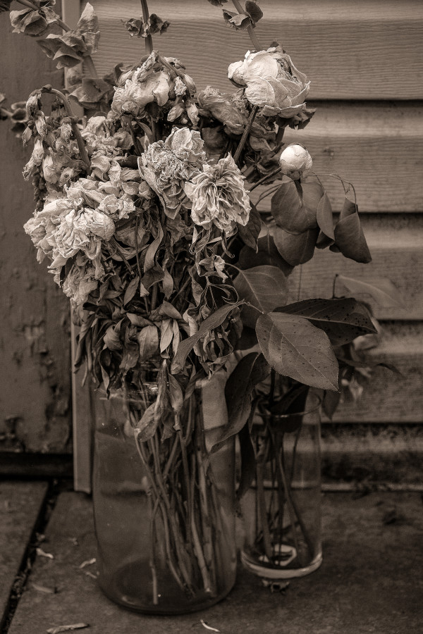 bouquet by Kelly Sinclair