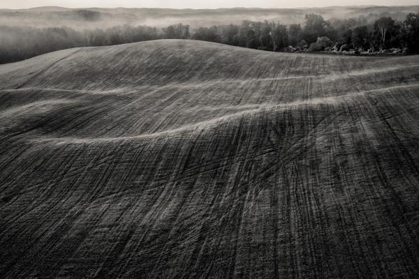 Landing by Kelly Sinclair