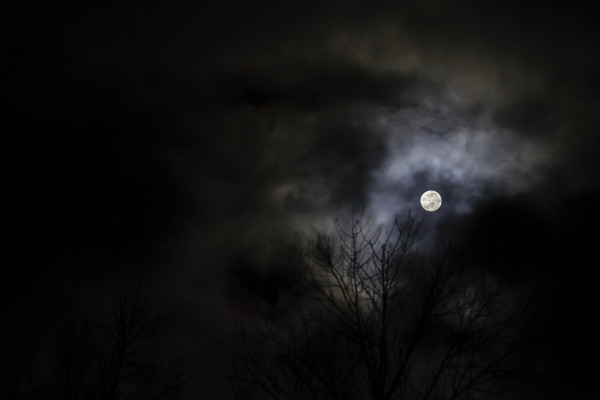 full moon in january by Kelly Sinclair