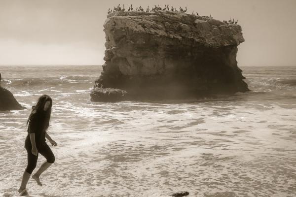 Pelican rock by Kelly Sinclair