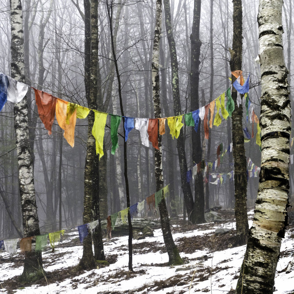 Prayer Flags, KTD, Woodstock, NY by Kelly Sinclair