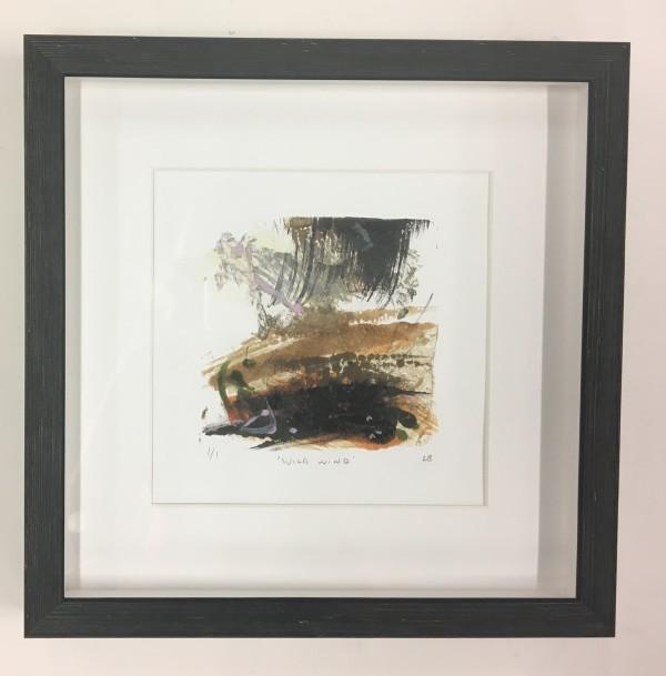 Wild Wind by Lesley Birch