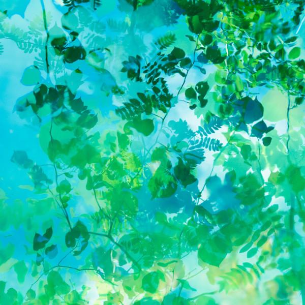 'Rain dance 8' 30x30cm print by caroline fraser