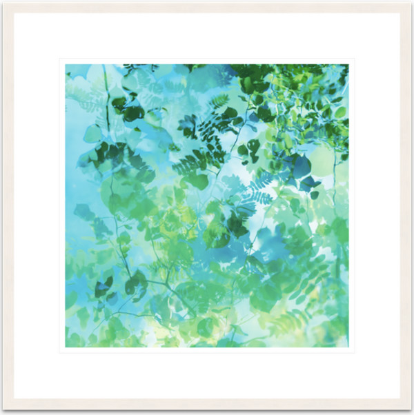 'Rain dance 8'  1 of 5  50x50cm framed print by caroline fraser