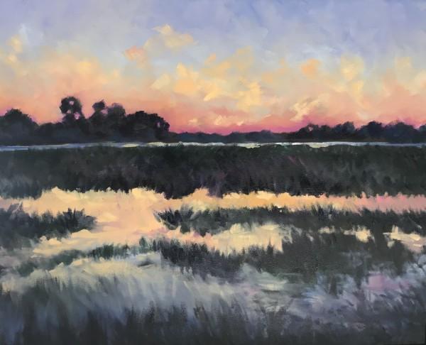 亚历山德拉·卡辛的《沼泽天空的色彩》