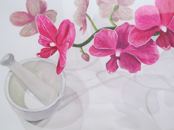 Orchid Shadows by Emily Barton