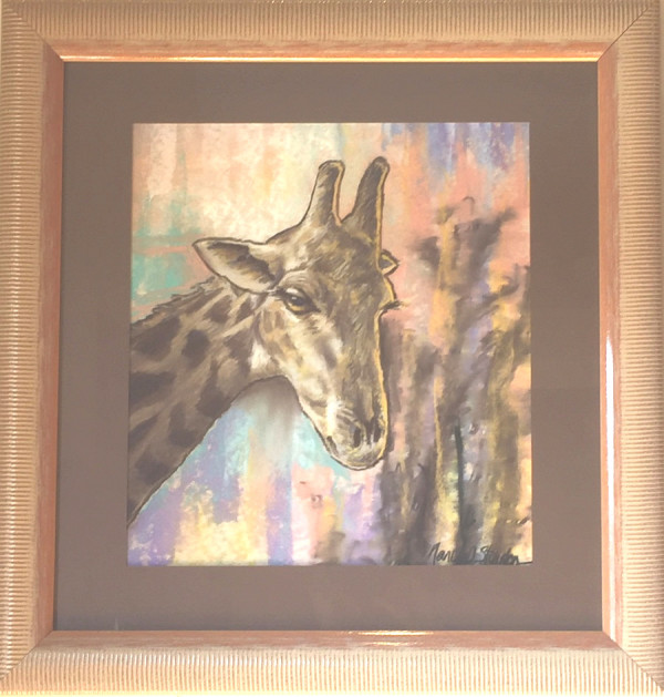 South African Giraffe by Nancy  Stainton