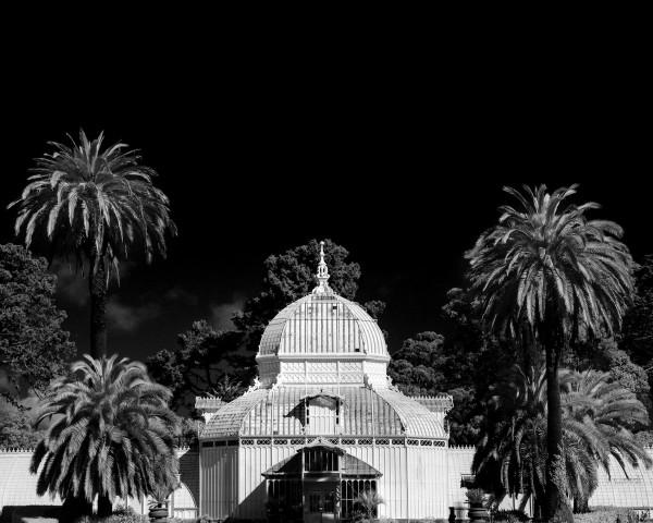The Conservatory by Kofi Amoa