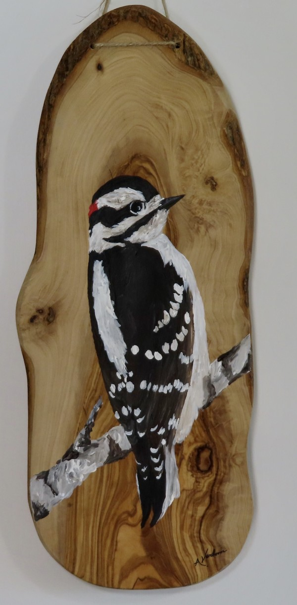 Downy Woodpecker on Olive Wood by Alexandra Verboom
