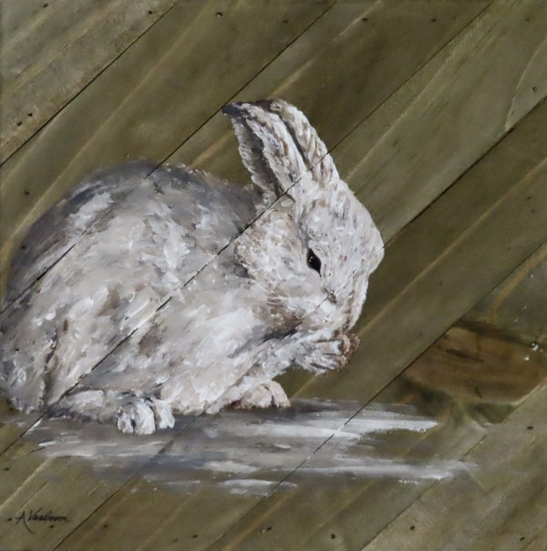 Snowshoe Hare by Alexandra Verboom