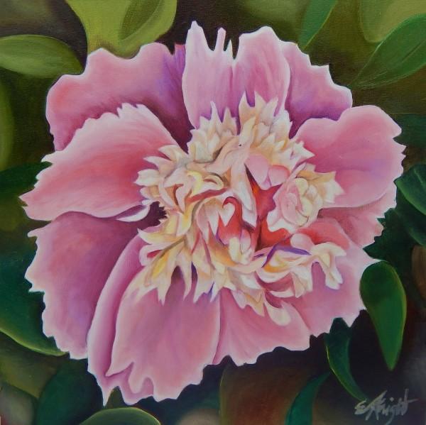 Pink Peony II by Emma Knight