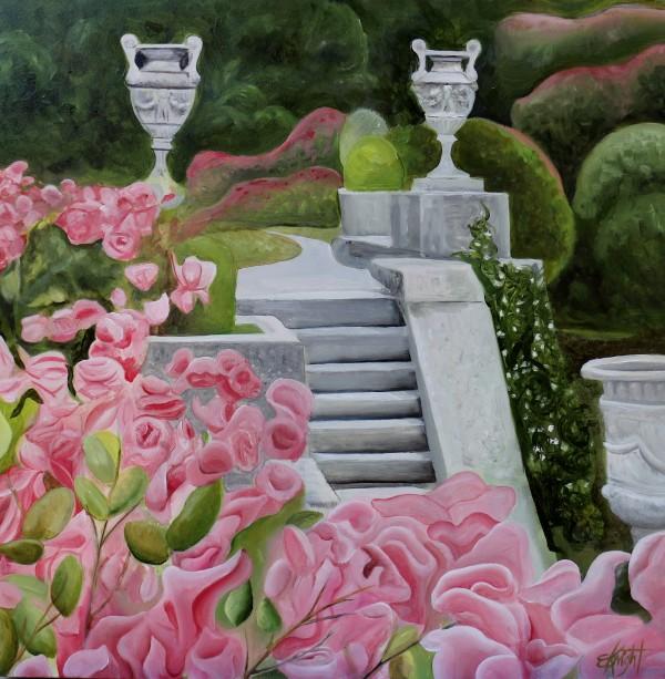 Maymont's Italian Garden Steps by Emma Knight