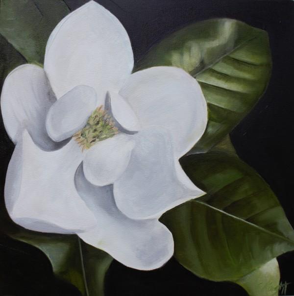 Magnolia Blossom II by Emma Knight