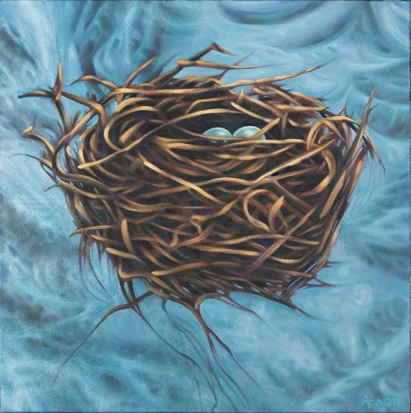 Nest Study #1: The Floating Nest