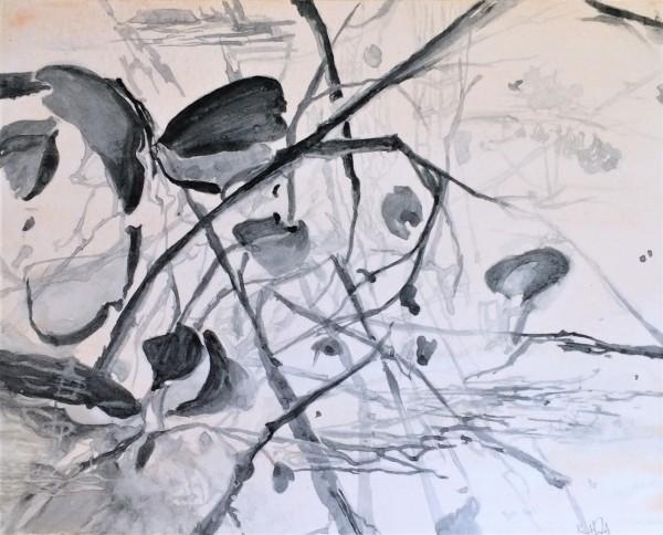 Petals, Trees, Leaves