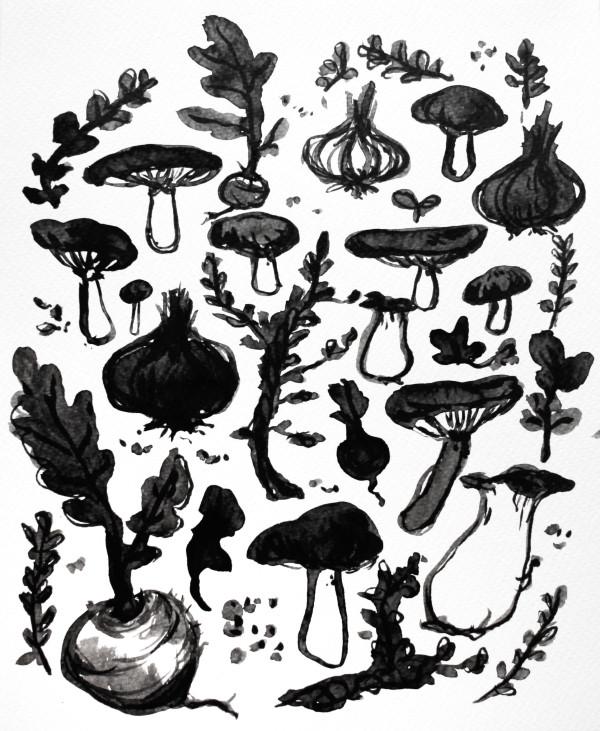 Roots & Mushrooms