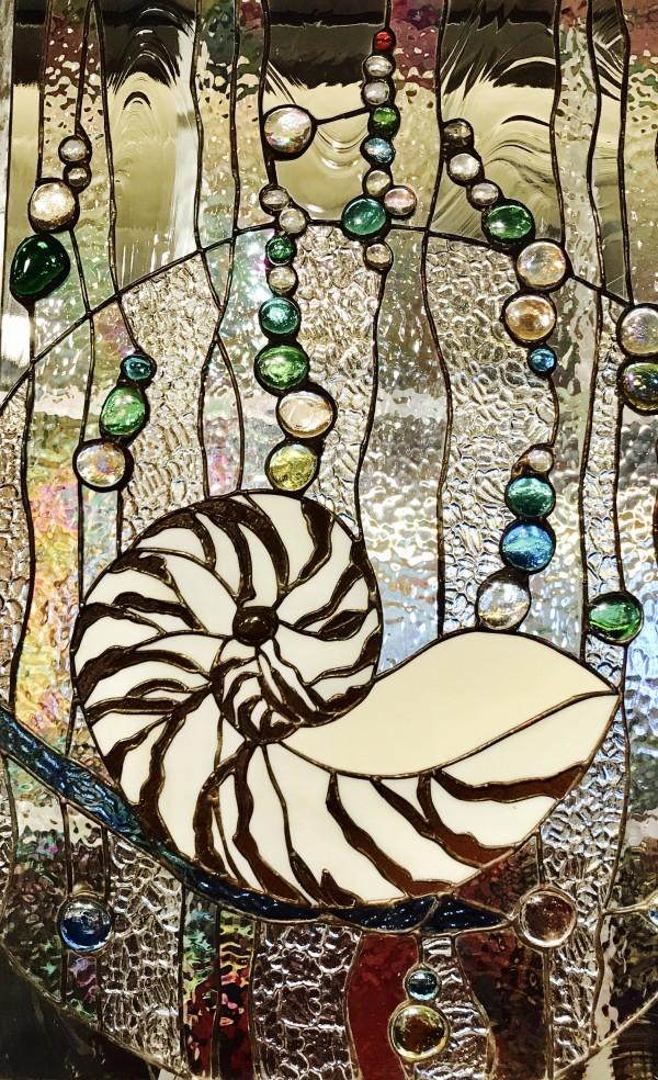 Nautilus by Pat Conway