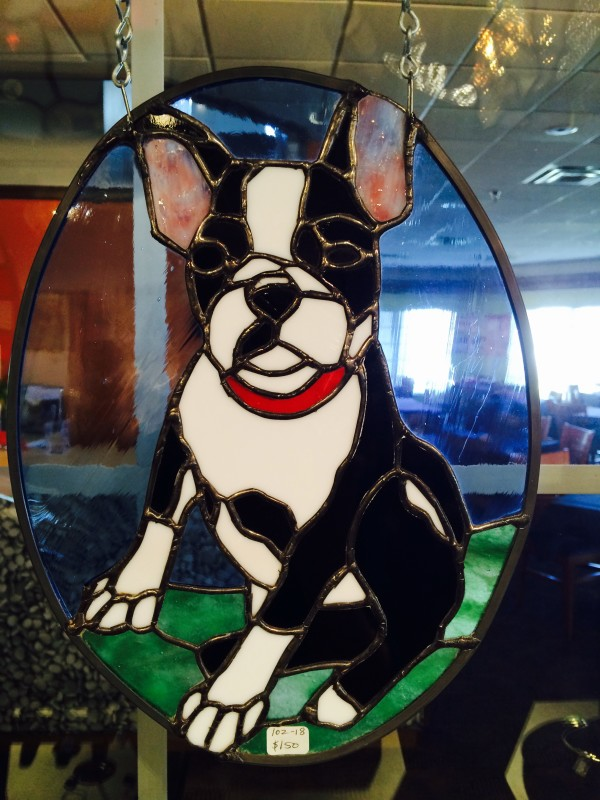 Boston Terrier by Pat Conway