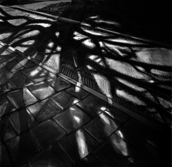 Shadow of a tree by Judith Ansems Art