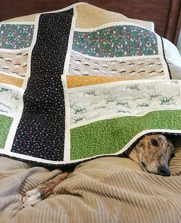 Mike Greyhound Quilt by Laura Brady