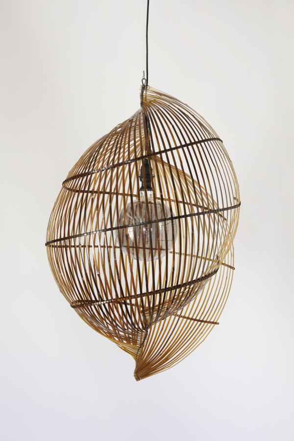 Single shell sculptural lamp by Charissa