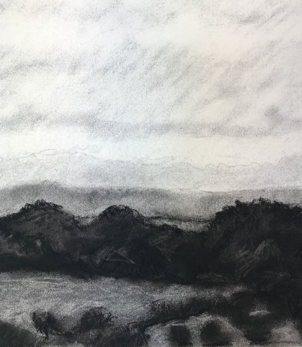 view towards Helford 2 by Anna Vyce