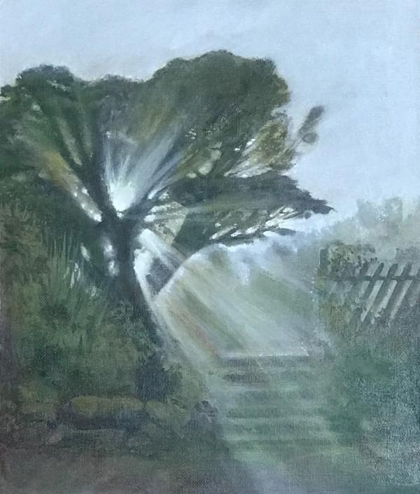 Misty Morning Light by Anna Vyce