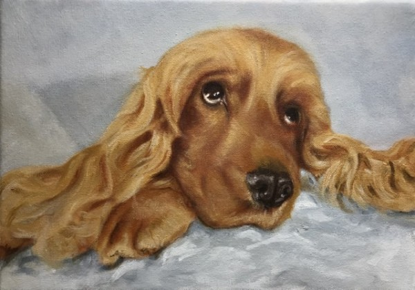 Lottie by Anna Vyce