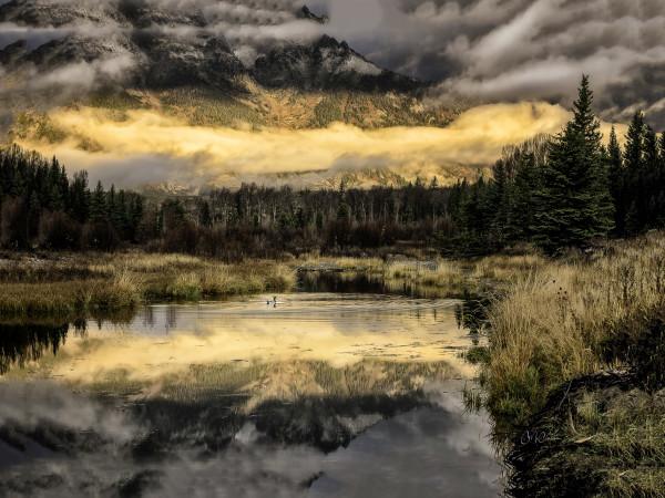 Teton Mallard by Connie McClaran