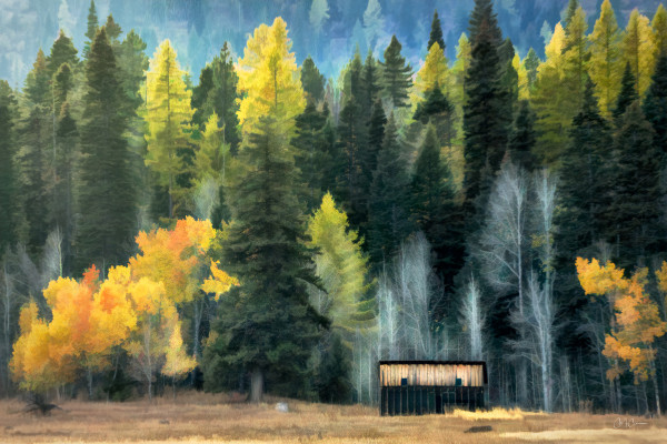 West Mountain Cabin by Connie McClaran