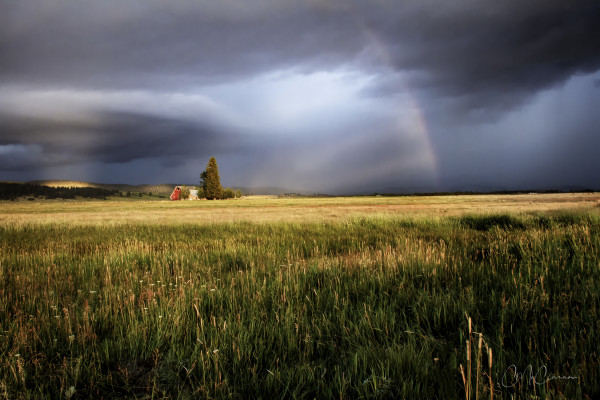 Red Barn Rainbow by Connie McClaran