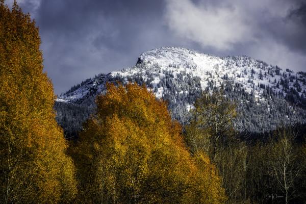 Jug Mountain Fall Portrait by Connie McClaran